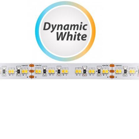 Professione Led - STRISCIA LED 5 MT SMD2216 1200 LED IP20 Bianco Dinamico}